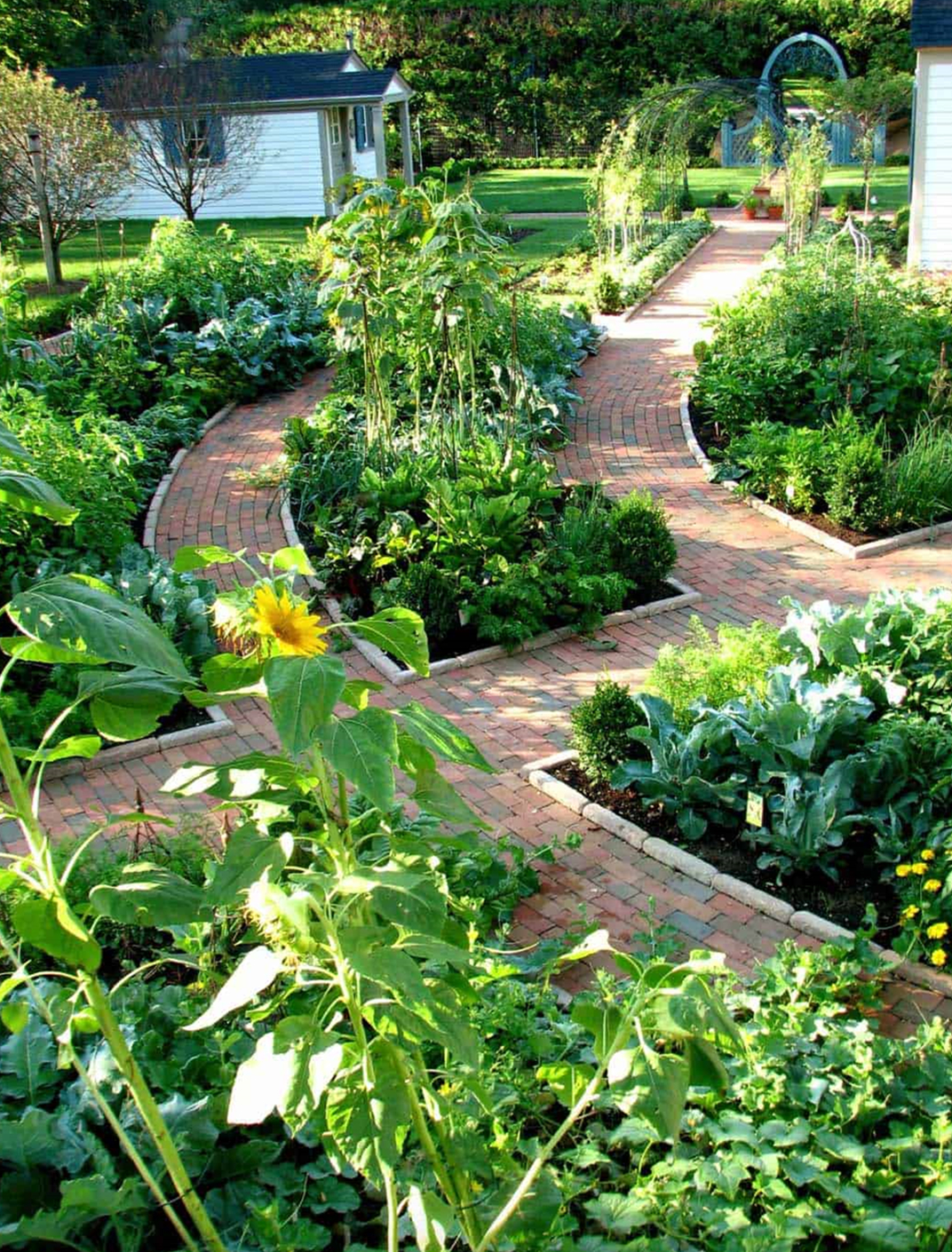 Garden Decoration- Benefits of Growing Your Own Vegetables.